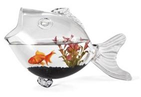 Des aquariums originaux for Bocal a poisson original