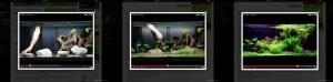 Exemple de vidéo sur aquaplante.fr