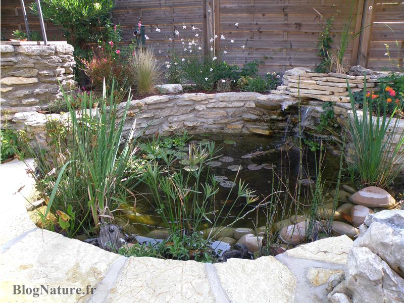 Rêve De Gosse Un Bassin Dans Le Jardin BlogNaturefr - Bassin de jardin bois 2