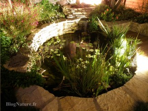 bassin_jardin_etape_15_eclairage_nuit_3_Blognature