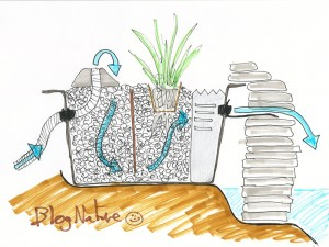 schema_filtration_bassin_jardin_blognature