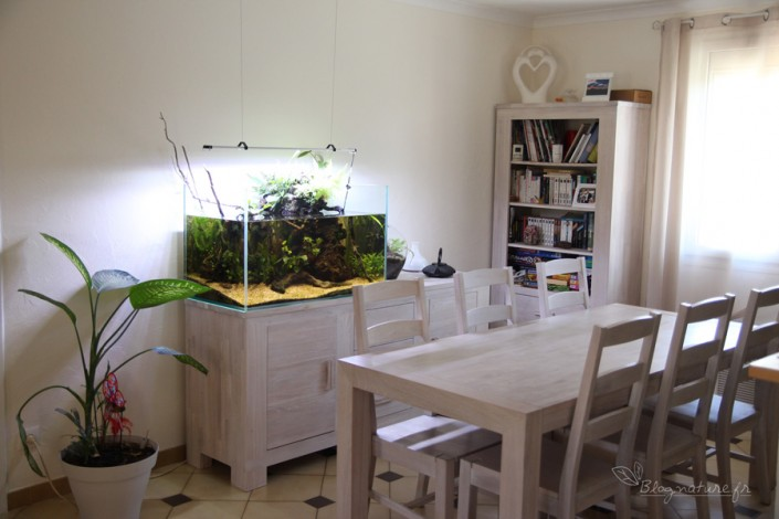 aquarium_ouvert_lowtech_blognature_001