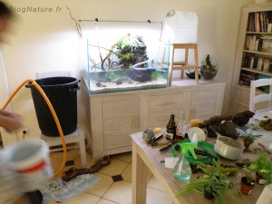 aquarium_ouvert_lowtech_blognature_108